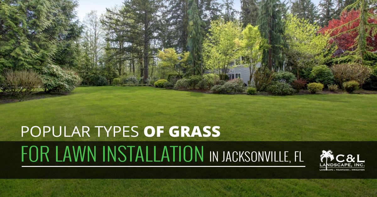 Residential Landscaping Jacksonville Fl Choosing The Right Type Of Grass