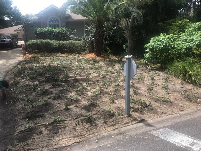 Landscaping Services Jacksonville Brick Paving Fl