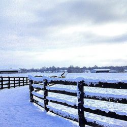 Clover Hill Farm view in the winter