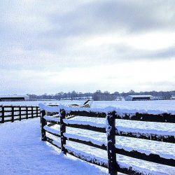 Clover Hill Farm view in the winter
