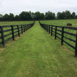 Large horse ranch facility in Paris, KY