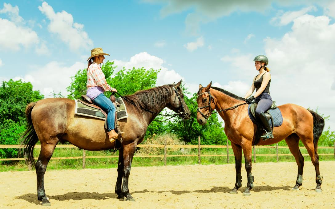 Horseback Riding Paris English Riding