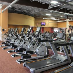 stationary bikes and treadmills