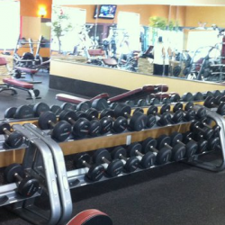 Club Metro USA rack of free weights in front of mirror