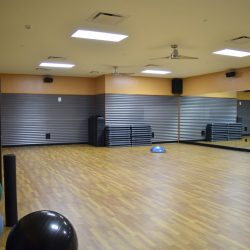 Club Metro USA yoga room with hardwood floors and exercise balls
