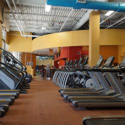 Club Metro USA rows of treadmills and other exercise equipment