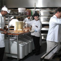 Five employees working in a kitchen - Colorado Pest Management