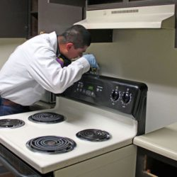 Colorado Pest Management technician with flashlight looking behind oven