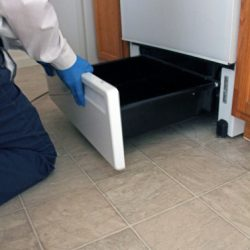 A gloved Colorado Pest Management technician opening an oven drawer