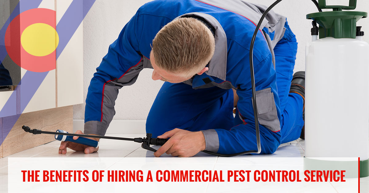 The benefits of hiring a commercial pest control service