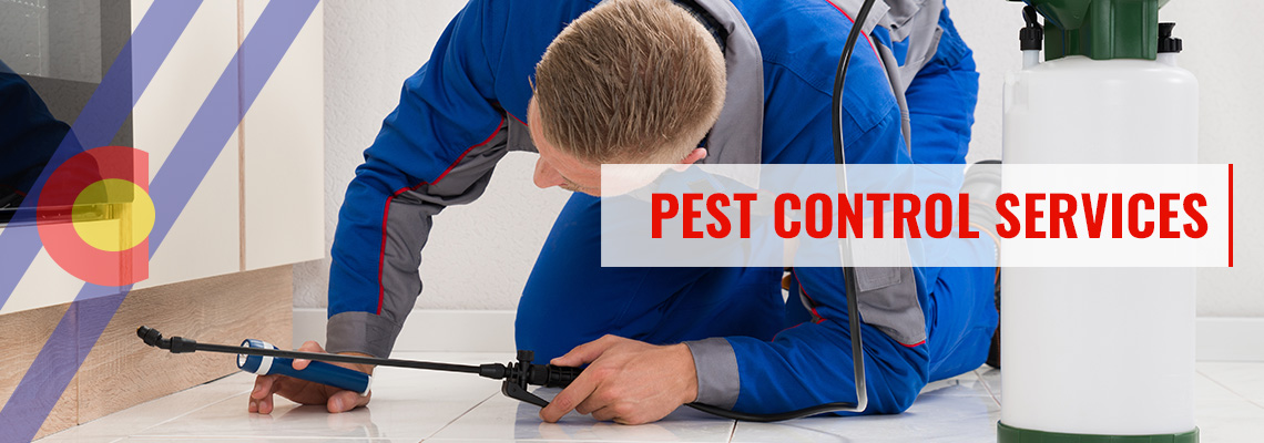Residential pest control services in Denver