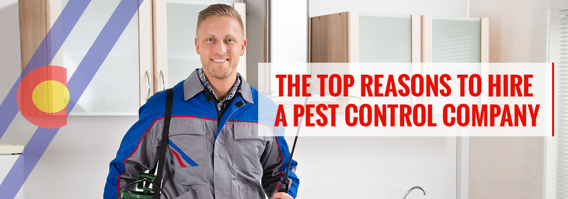 Top reasons to hire a pest management company