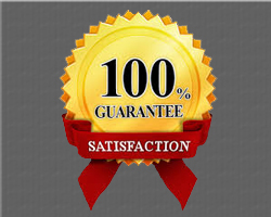 Satisfaction Guarantee 72 DPI gray
