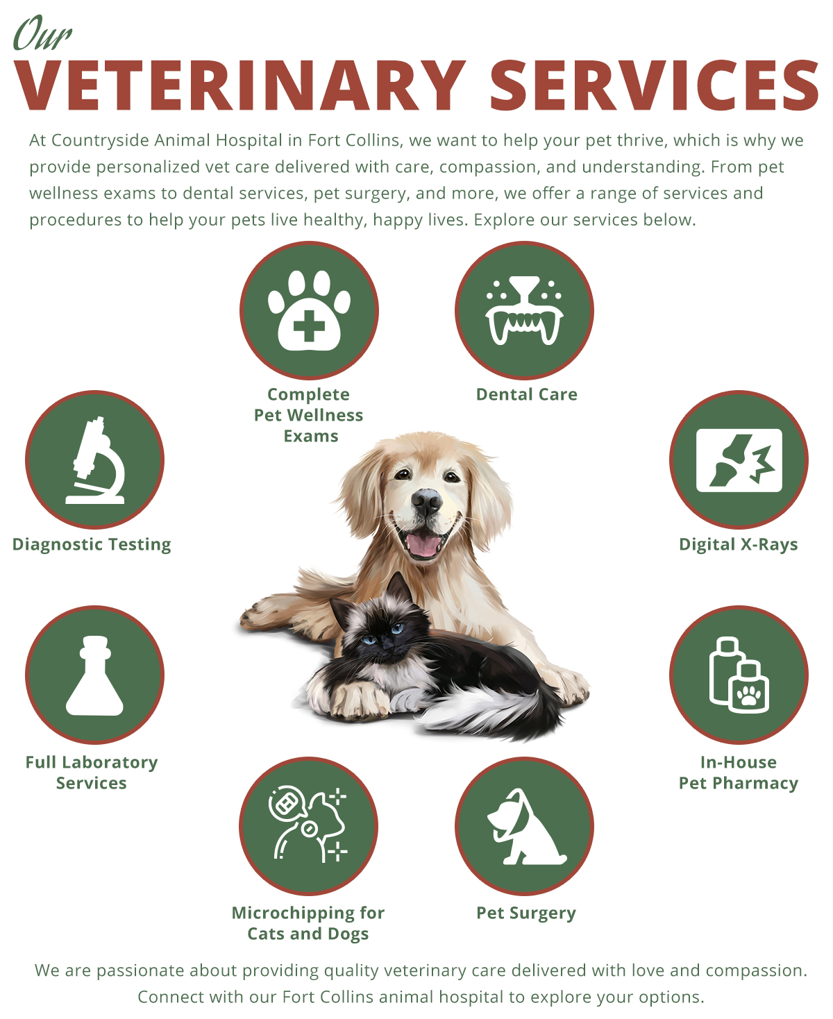 Infographic highlighting the different veterinary services we offer at our Fort Collins animal hospital for dogs and cats