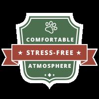 comfortable stress-free atmoshpere