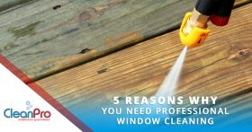 Pressure Washer - 5 Reasons Why You Need Professional Window Cleaning