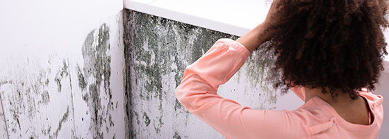 Image of a woman looking at a bunch of mold on her walls