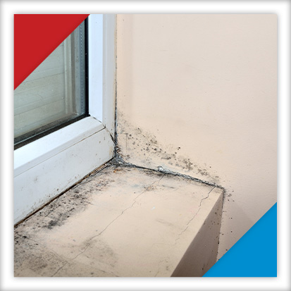 Image of mold growing around a window