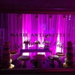Creative Games Marie Antoinette's Cake concessions stand perfect for your deluxe event