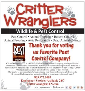 knoxville best pest control company