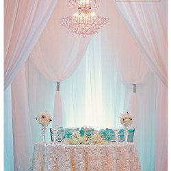 Blue & White Banquet Hall & Wedding Decor at The Crystal Ballroom in Orlando