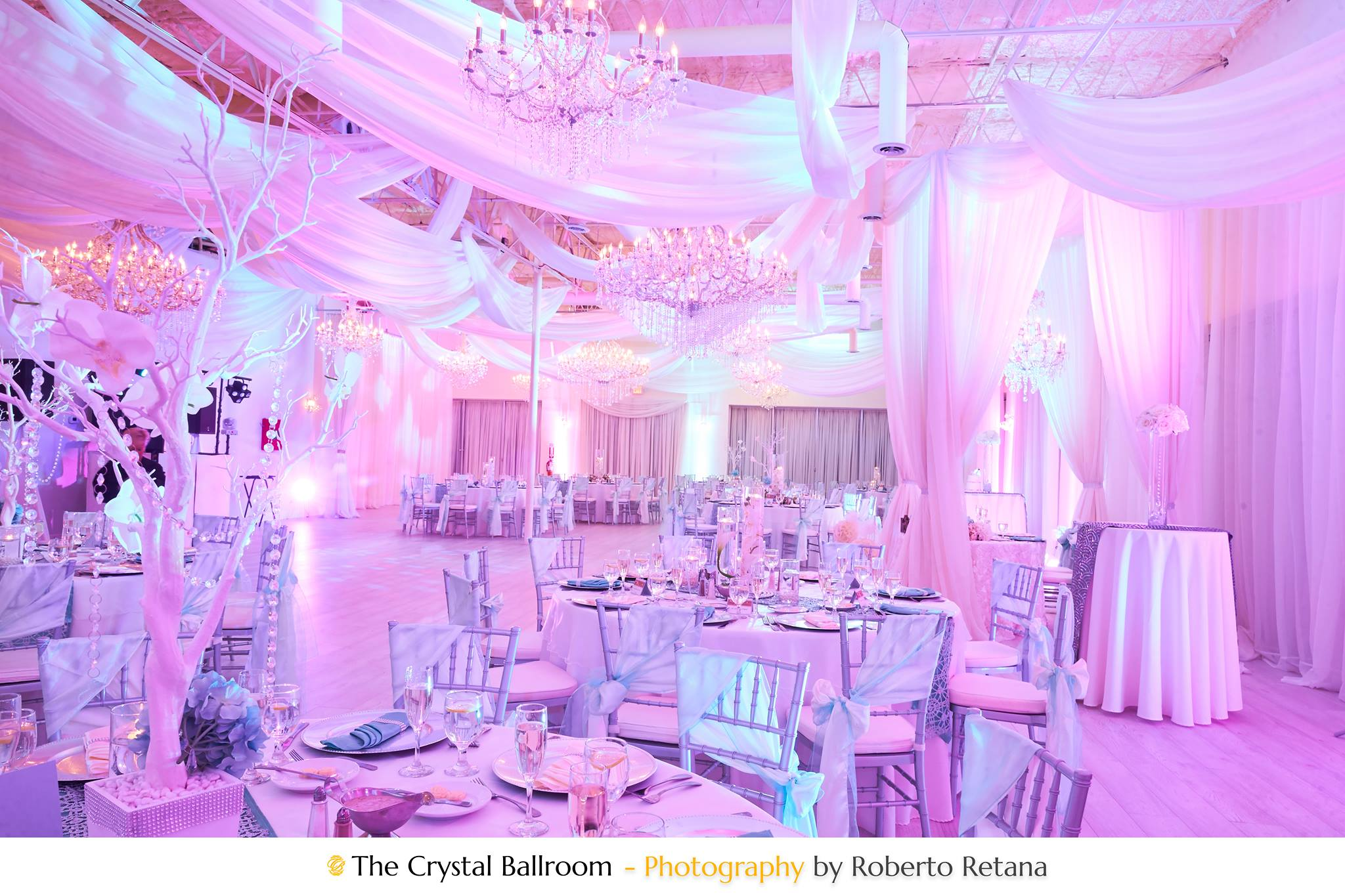 Wedding packages clearwater banquet halls fl event venue 33760 wedding packages clearwater banquet halls fl event venue 33760 the crystal ballroom junglespirit Image collections