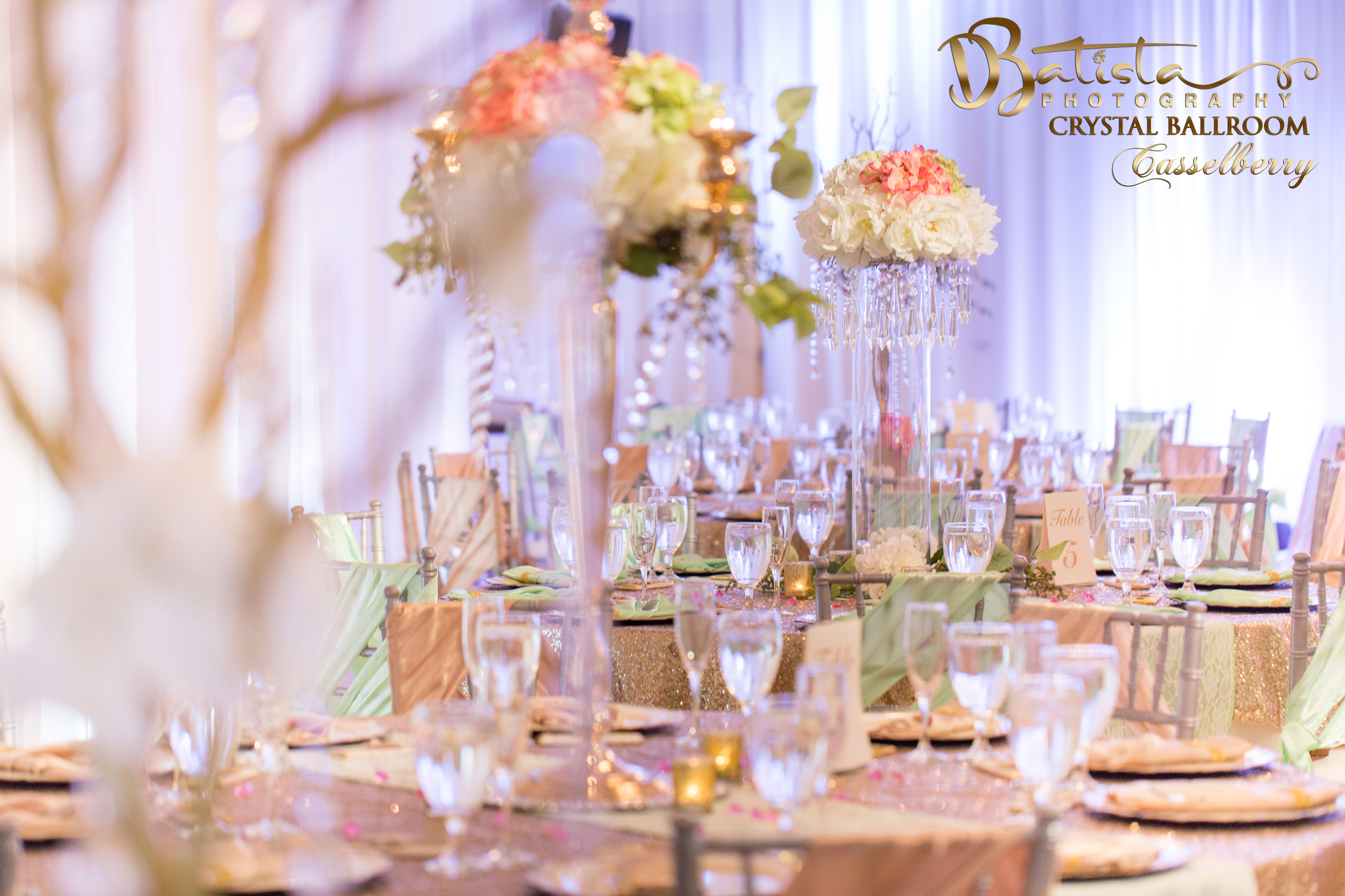 Casselberry banquet hall rates book your event now the crystal casselberry banquet hall rates book your event now the crystal ballroom junglespirit Gallery