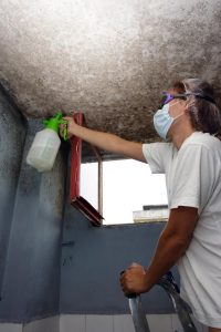 Controlling the Mold and Mildew Problem at Workplace Image 08152016