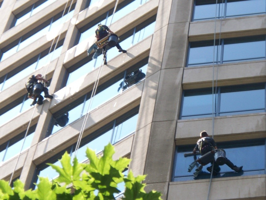 why-professional-window-cleaning-is-going-to-shine-your-business-picture