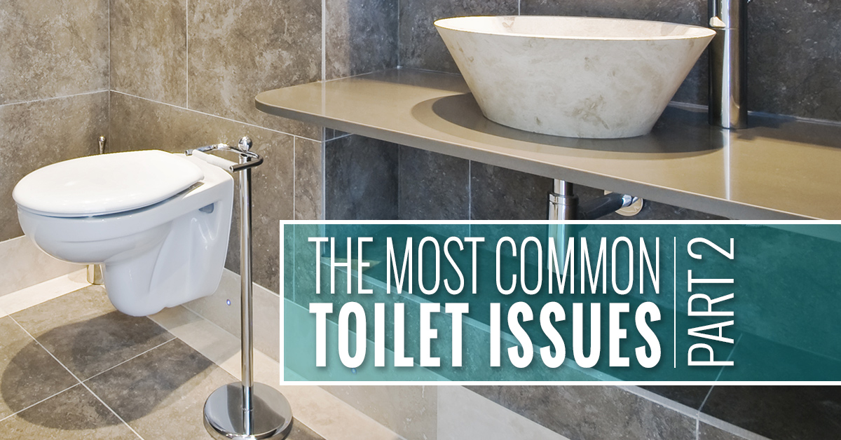 The Most Common Toilet Issues Part 2