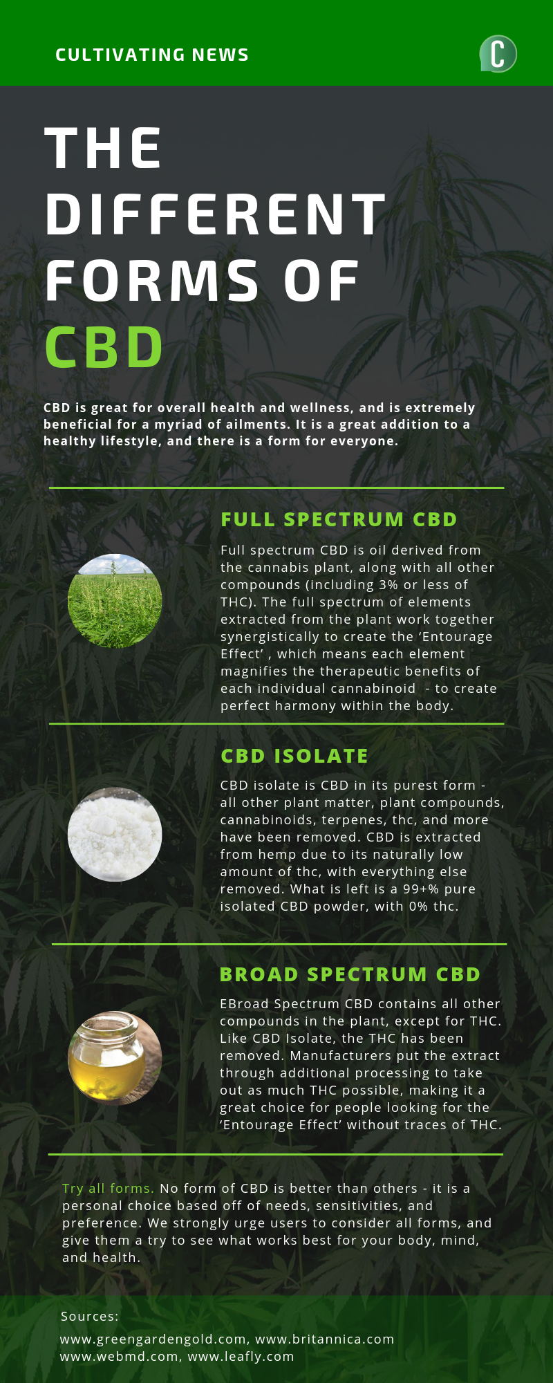 Forms of CBD - Infographic