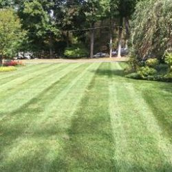 A perfectly cut lawn from Cutting Edge Landscaping lawn care service.