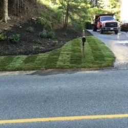 How your yard is liable to look with Cutting Edge Landscaping yard maintenance service.