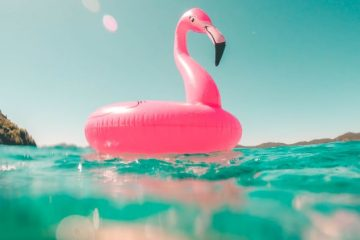 An inflatable pink flamingo floats on the water of a swimming pool. Photo by Vicko Mozara on Unsplash.