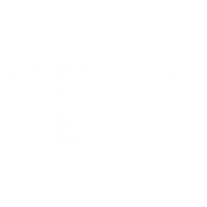 The DC Team