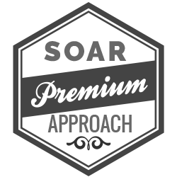 image of dialexis award badge for soar
