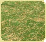 soil-conditioner-02