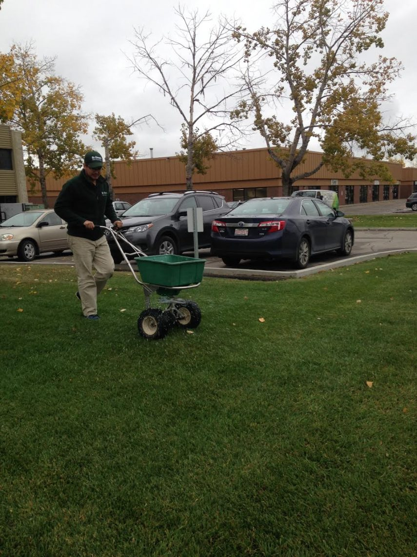 grassspreading2
