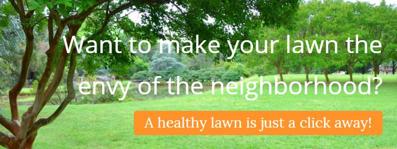 m10104-healthy-lawn