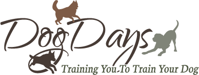 Dog Days Training Center