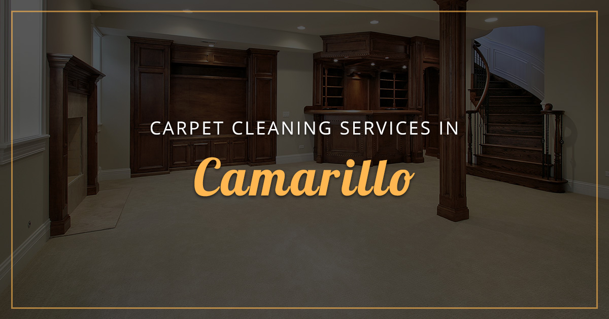 Carpet Cleaning Services Contact Us For Carpet Cleaning In