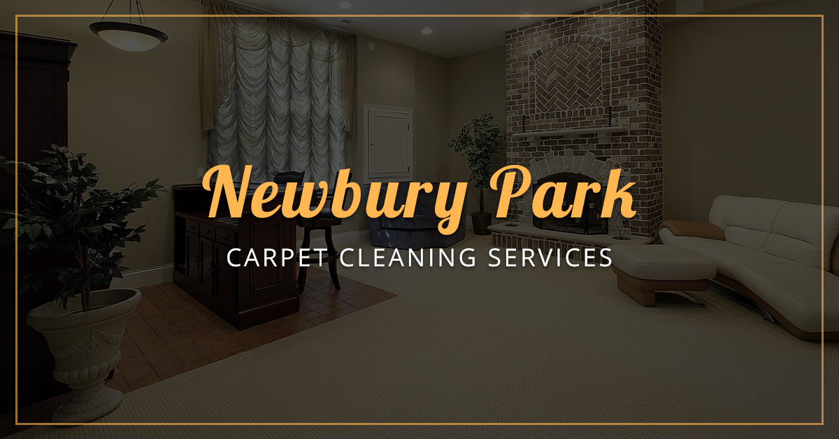 Carpet Cleaning Services Contact Us For Carpet Cleaning In Newbury