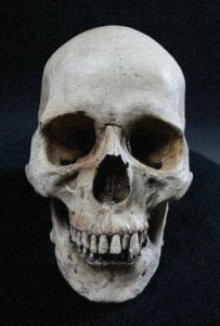 Long after all other parts of the body have decayed, teeth remain because they are the hardest substance in the human body, even harder than bone.