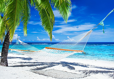 Don't miss out on our premier vacation packages. Call today!