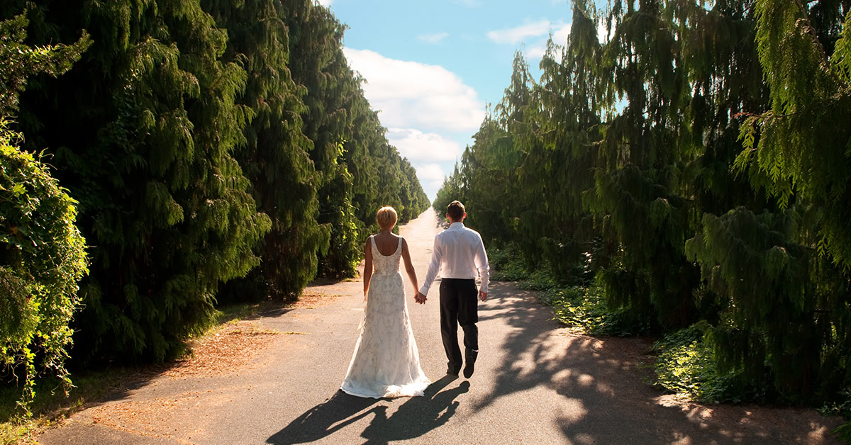 See if a destination wedding is right for you