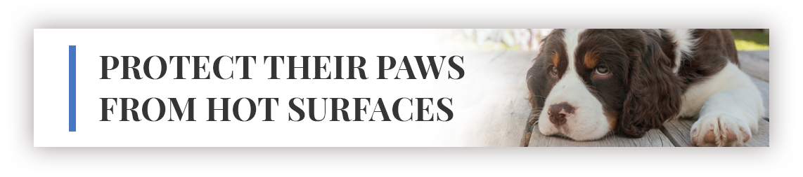 PROTECT THEIR PAWS FROM HOT SURFACES