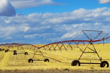 crop irrigation system