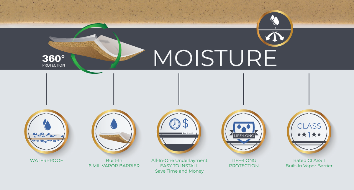 ECF Moisture Infographic