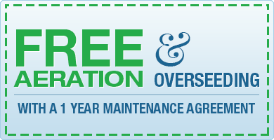 Coupons-Free-Aeration-01