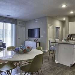 Open concent apartment home with kitchen, living, and dining areas - Elements at Prairie Center